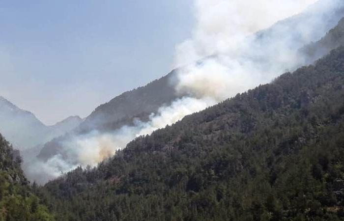 حريق كبير التهم أشجار جبل الرويس