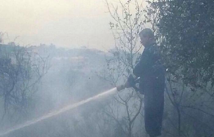 بسبب القصف الإسرائيلي… حريق بين الهبارية وشبعا