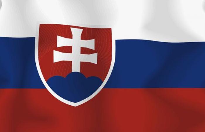 سلوفاكيا: لتشكيل حكومة تعمل على تحقيق مصالح لبنان