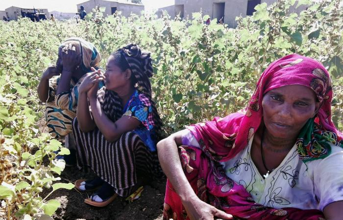 السودان: إثيوبيا تفتعل المشاكل هرباً من محنتها الداخلية