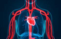المتلازمة الكبدية الرئوية HPS: الأسباب والأعراض والتشخيص والعلاج