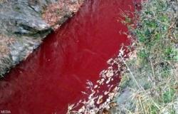 نهر يتحول إلى الأحمر القاني.. والسبب