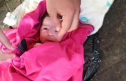 الرضّع في الطرقات خطيئة أُمّ أَم أخطاء مجتمع؟